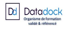 DATA DOCK LOGO